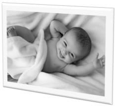 Pañaleras para bebés